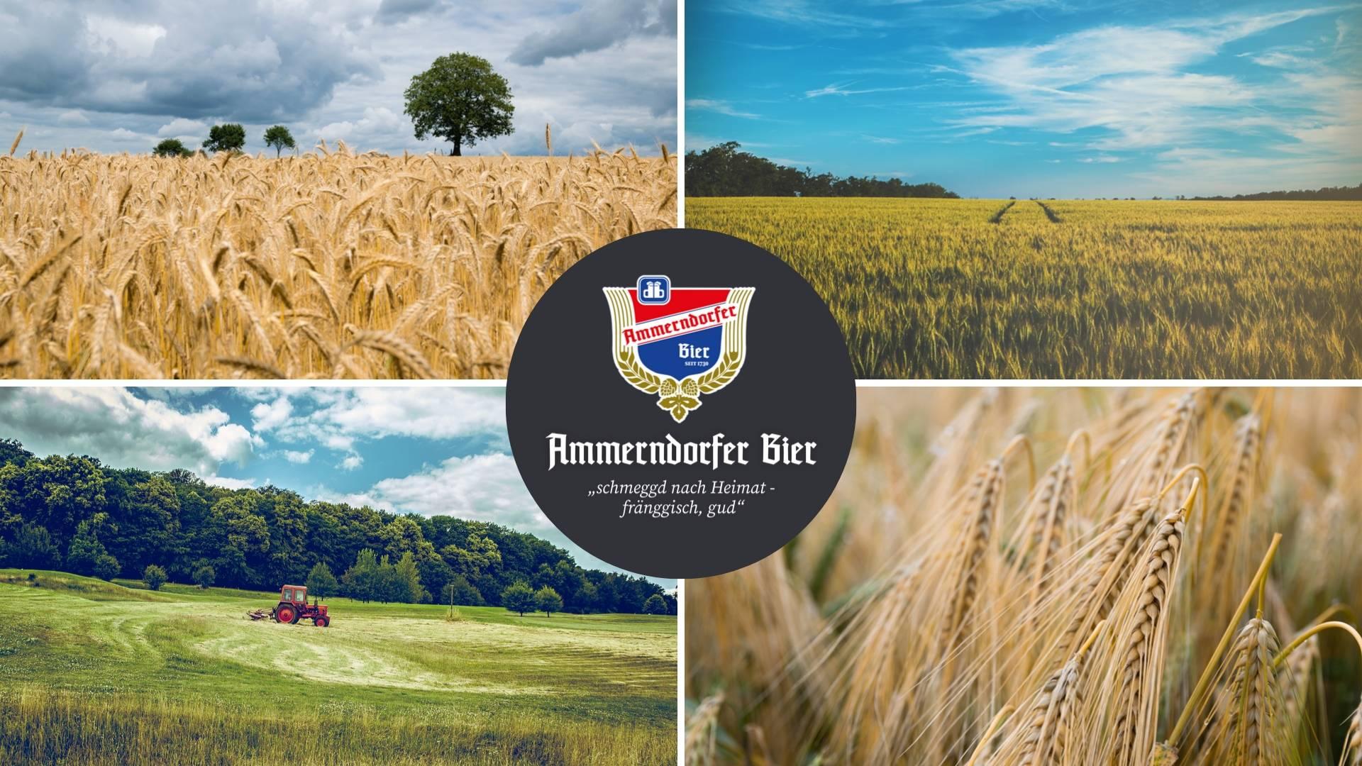 webdesign-webentwicklung-werbeagentur-ammerndorfer-bier